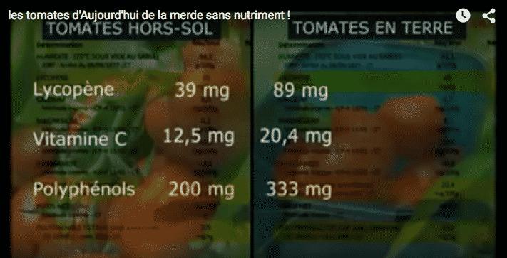 tomates-bio-qualite